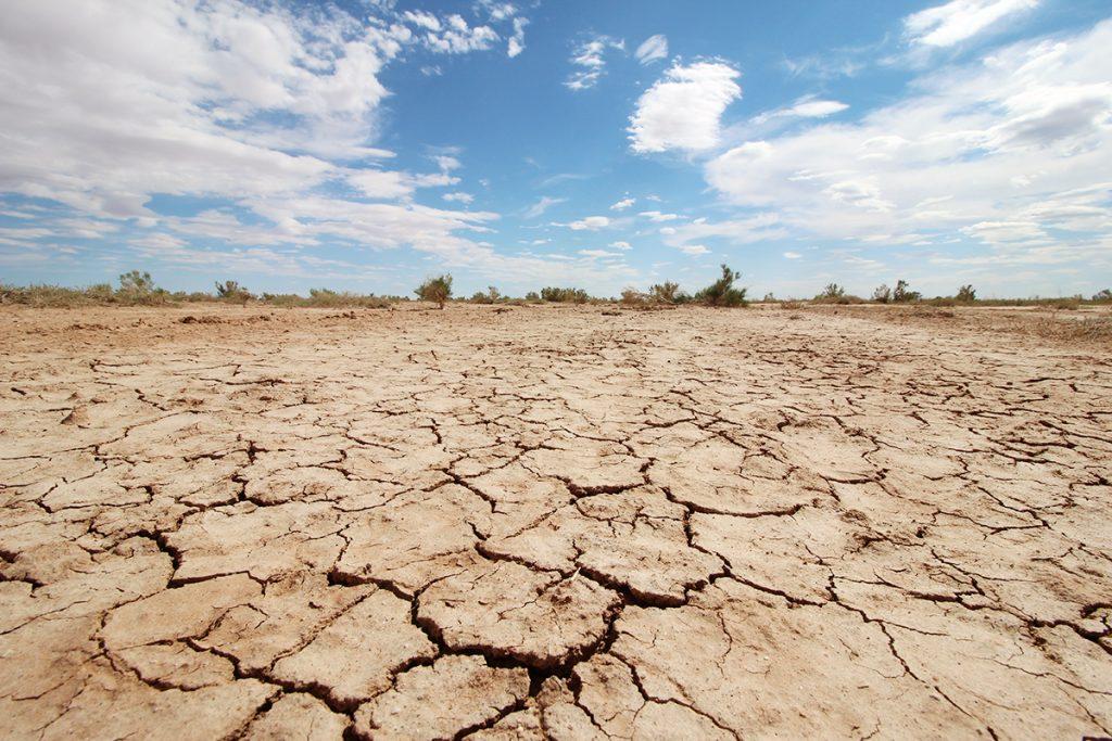 Trockener Boden und dürre Sträucher wiederspiegeln die Trockenheit und Wasserknappheit im Süden des Landes.