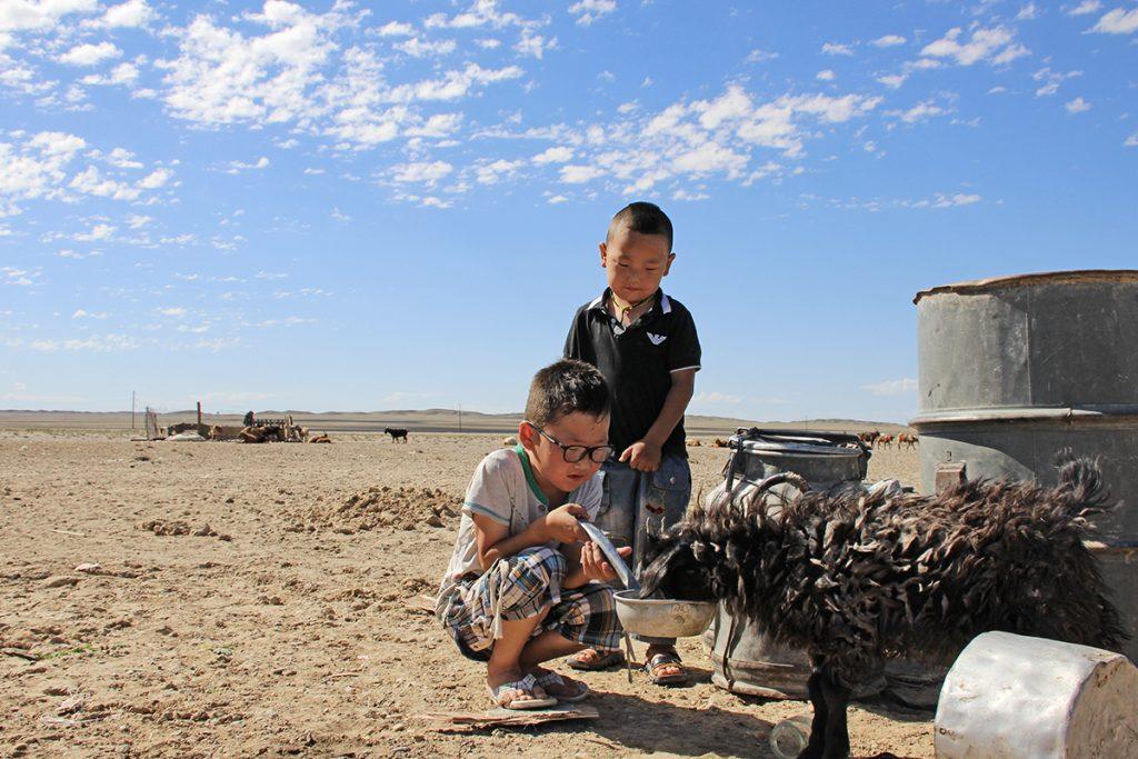 Kinder Mongolei