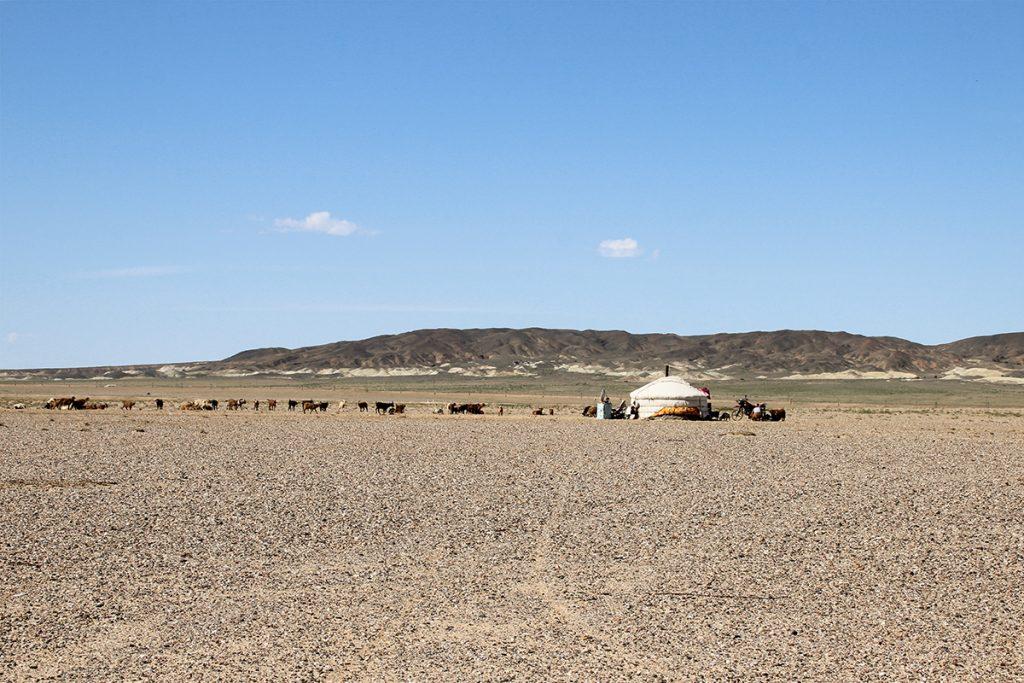Nomaden Mongolei Ost Gobi