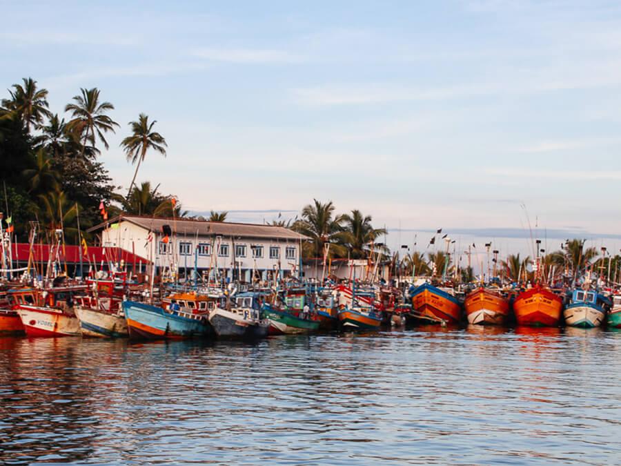 Reisebericht Sri Lanka, Mirissa