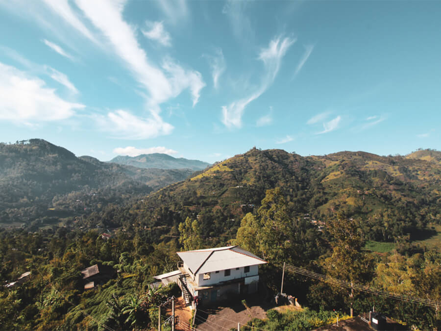 Reisebericht Sri Lanka, Halpe Tea Farm, Ella