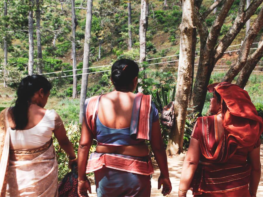 Reisebericht Sri Lanka, Woman