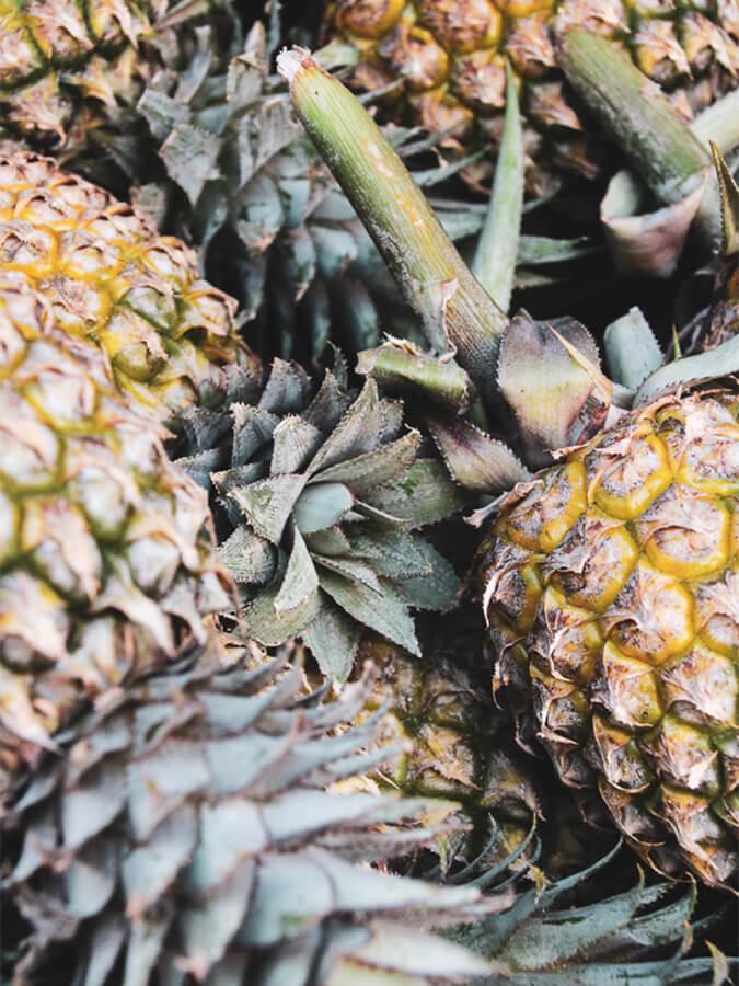 Reisebericht Sri Lanka, Ananas