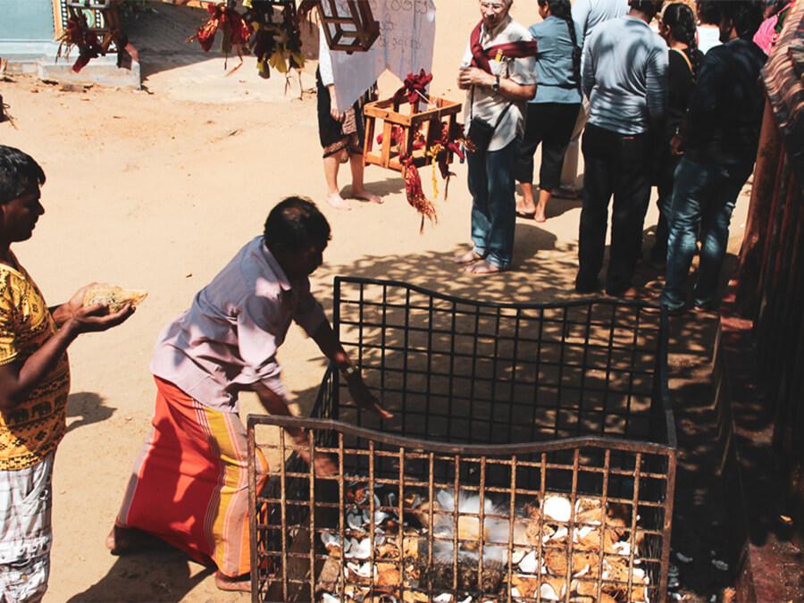 Reisebericht Sri Lanka, Prayer