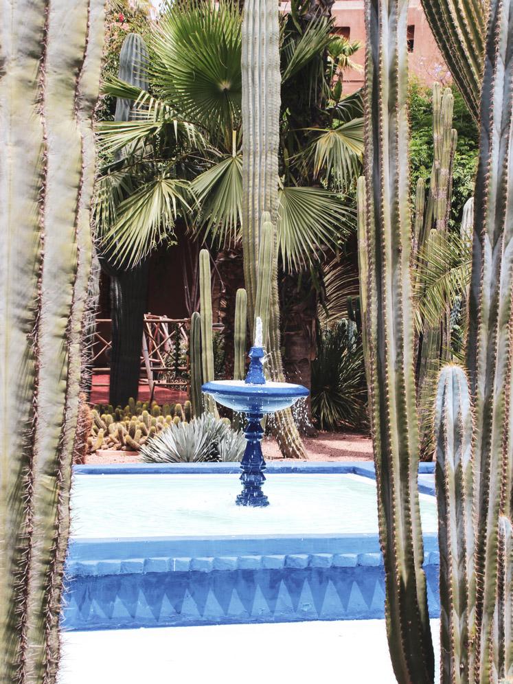 Fountaine, Jardin Majorelle, Marrakesch, Kaktus, Roadtrip Marokko